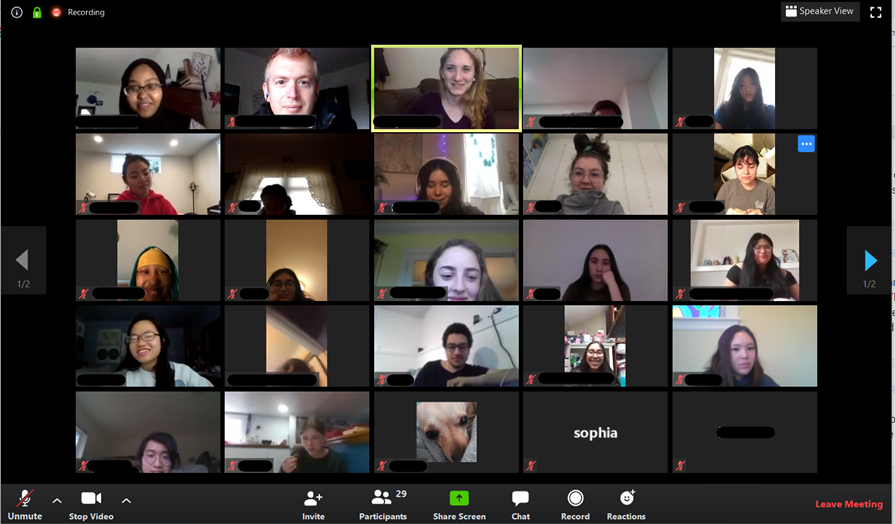 Zoom call of Leadership Podleaders